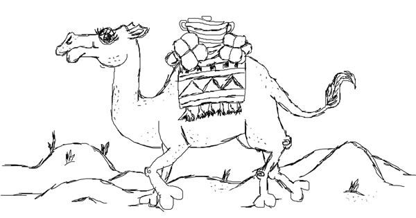 Camel drawing by Rui