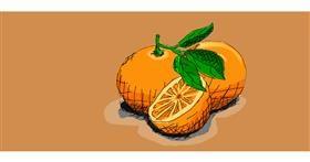 Drawing of Orange by Cabrito