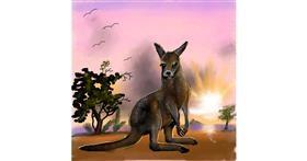 Drawing of Kangaroo by Leah