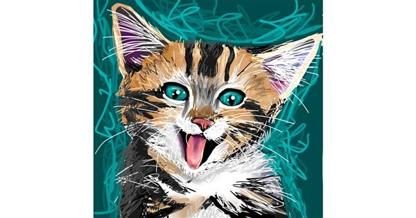 Kitten drawing by Rose rocket