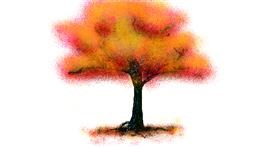 Drawing of Tree by ogie