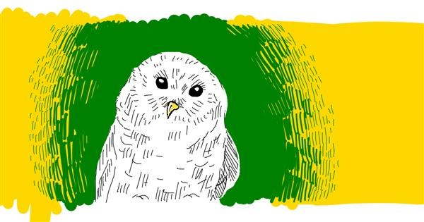 Owl drawing by Tami