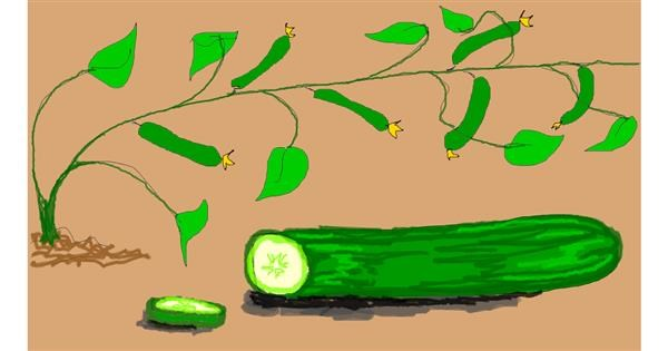 Cucumber drawing by Lolo