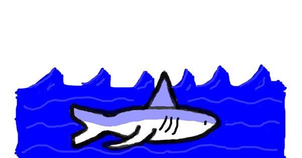 Shark drawing by Trash
