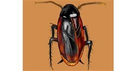 Drawing of Cockroach by Cec