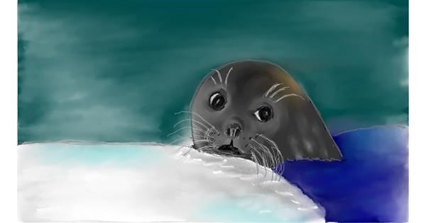 Seal drawing by Rush
