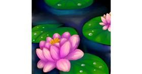 Drawing of Water lily by Bishakha
