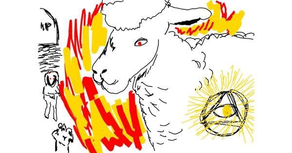 Sheep drawing by Jana