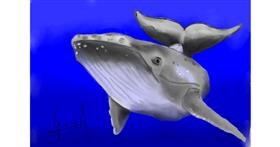Drawing of Whale by Bibattole