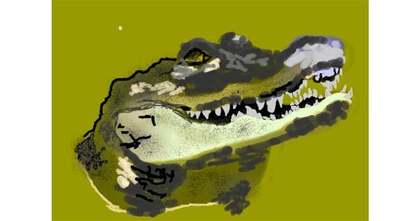 Alligator drawing by 𝐓𝐎𝐏𝑅𝑂𝐴𝐶𝐻™