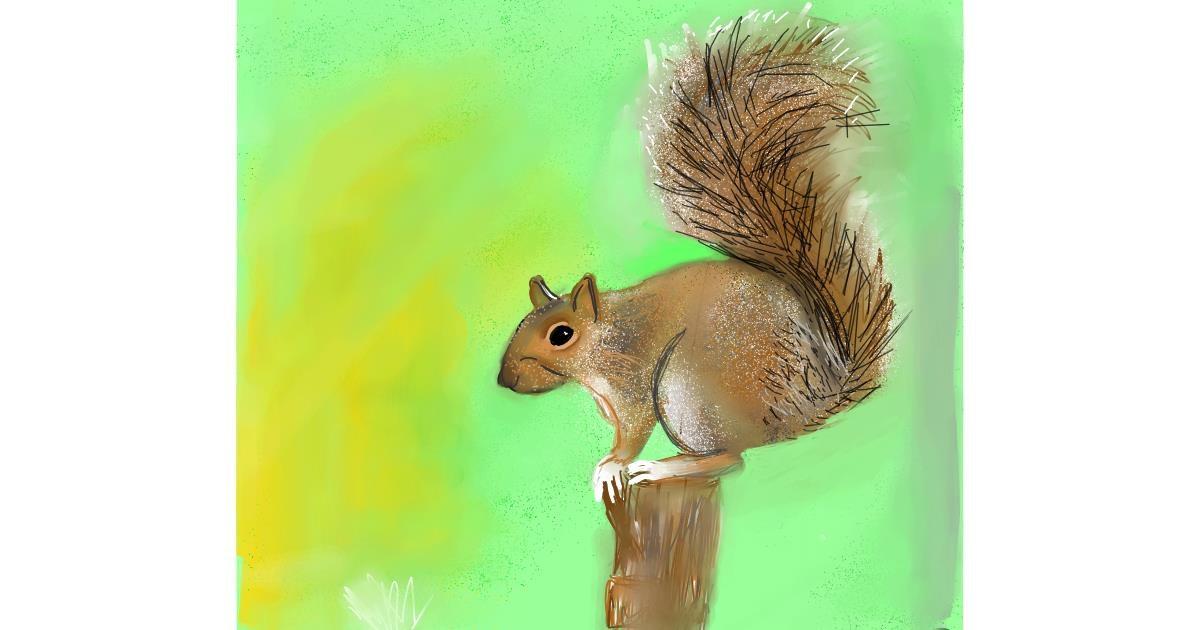 Squirrel drawing by Emit