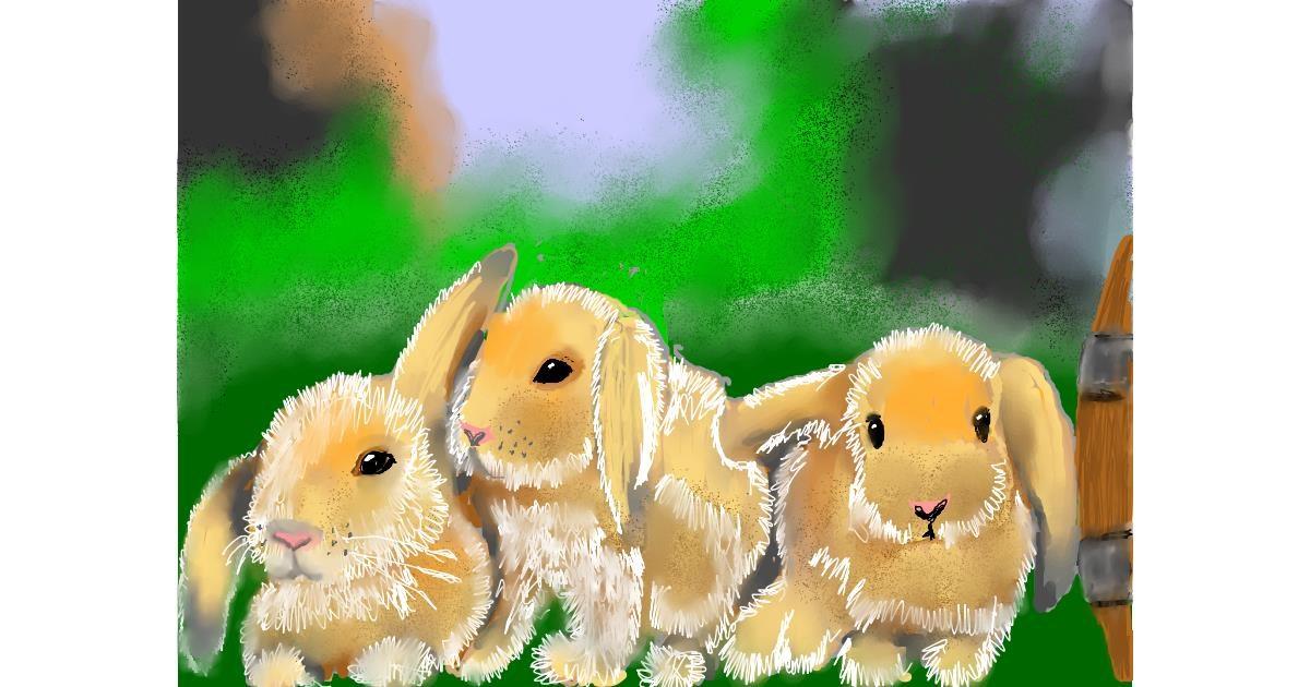 Bunny drawing by SAM AKA MARGARET 🙄