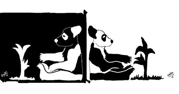 Panda drawing by SHADOW