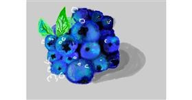 Blueberry drawing by 𝐓𝐎𝐏𝑅𝑂𝐴𝐶𝐻™