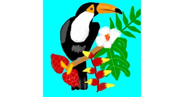 Toucan drawing by MaRi