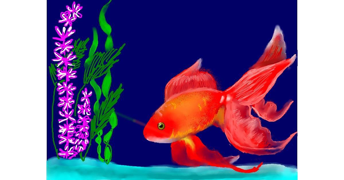 Drawing of Goldfish by SAM AKA MARGARET 🙄