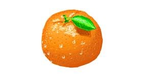 Drawing of Orange by Sam